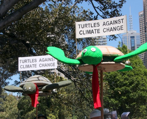 Turtles against climate change - Melbourne rally for Climate Action, 2013.
